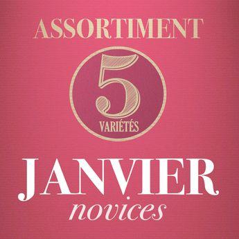 01 - ASSORTIMENT DE JANVIER - novices