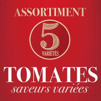 ASSORTIMENT DE TOMATES: DIVERSITE DE SAVEURS