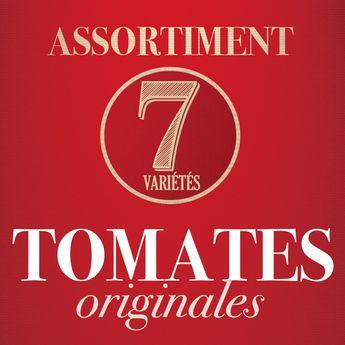 ASSORTIMENT DE TOMATES ORIGINALES