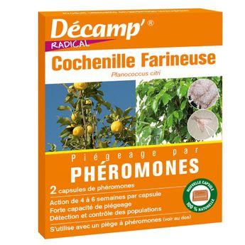 PHEROMONE CONTRE LA COCHENILLE FARINEUSE